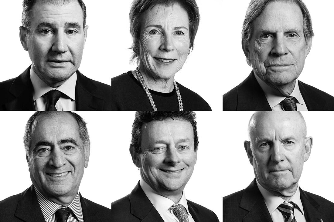Board of Directors Portrait Fotograf